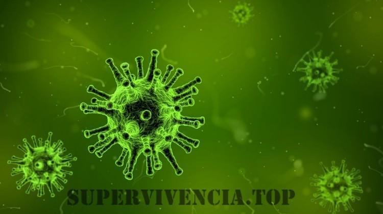 Lecciones de la historia sobre cómo sobrevivir a las infecciones masivas